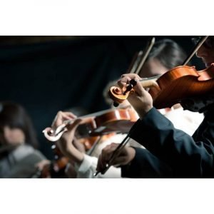 performers and instruments in chamber and orchestral music